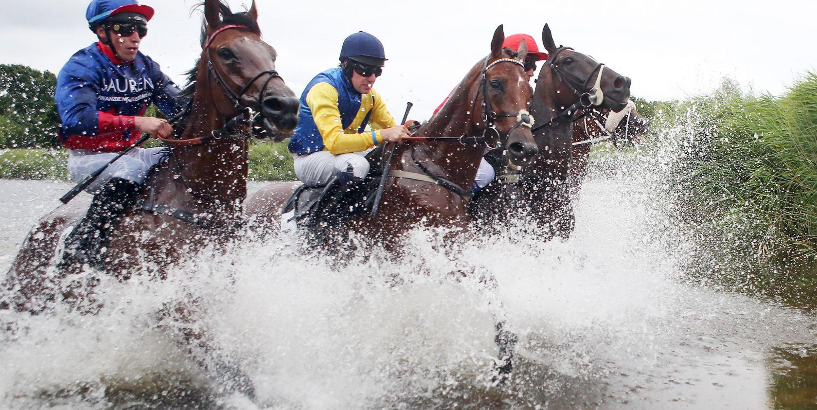Aus Rennpferd wird Seepferd - Seejagdrennen am 5. Juli 2018