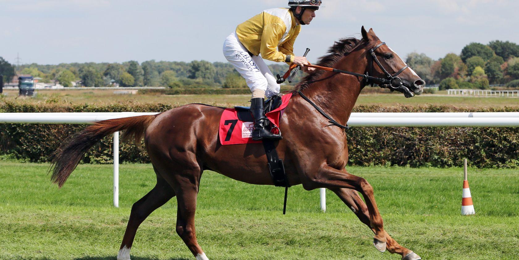 Noch 29 Pferde im IDEE 150. Deutschen Derby
