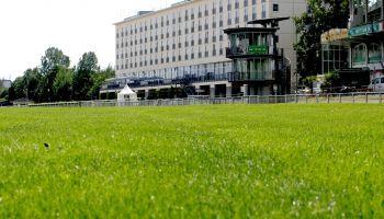 Ungetrübte Derbyhoffnung - 102 Pferde für das Deutsche Derby 2021 gemeldet