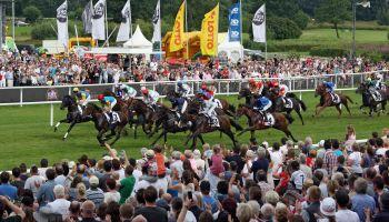 Noch 16 Pferde im Derby
