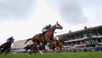Für das Idee 149. Deutsche Derby stehen aktuell noch 69 Pferde in der Meldeliste -  20 dürfen am 8. Juli in das berühmte Rennen in Hamburg-Horn starten. (Foto: Frank Sorge)