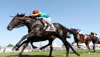 Noch 65 Pferde haben die Chance auf den Sieg im IDEE 150. Deutschen Derby