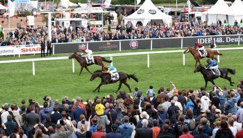 Das IDEE 149. Deutsche Derby rückt näher - 28 Pferde sind aktuell in der Teilnehmerliste. copyright: Frank Sorge/galoppfoto.de