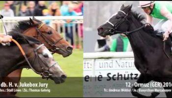 Rückschau auf das 149. und Vorschau zum IDEE 150. Deutschen Derby mit Bildern von allen wichtigen Rennen und den Favoriten Laccario, Django Freeman und Quest the Moon.