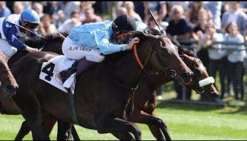 Derbystarter Monreal landet auf dem 3. Platz im Fritz Henkel Stiftungs-Rennen