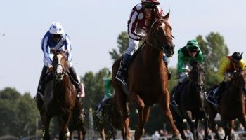Der pferdewetten.de - Großer Hansa-Preis (Gr. II, 2.400m, 70.000 Euro) ist das zweitwertvollste Rennen des IDEE Derby-Meetings und wurde zu einer sicheren Beute des französischen Gastpferdes French King mit Olivier Peslier.